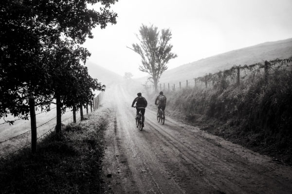 Canva - Grayscale Photography of Two Person Biking